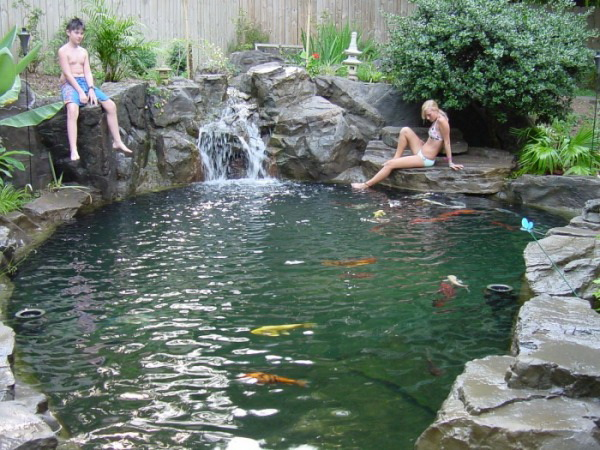 K pacie jazierka ako pr rodn biobaz n for Fische naturteich