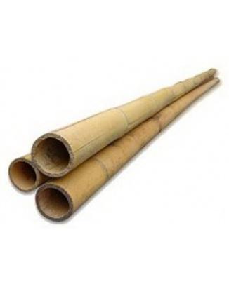 Bambus dekoračný 35/40 mm