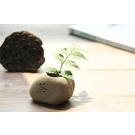 Keramický bonsai črepník vzhľadu kameňa