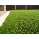 Umelý trávnik š. 2 m