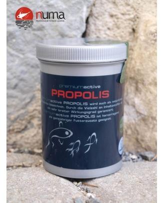 FIAP premiumactive Propolis