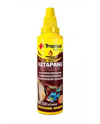 Tropical Ketapang Extract 50 ml