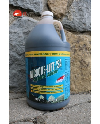 Microbe-Lift Sludge Away 4 l